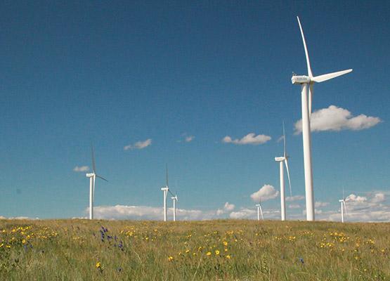 silver sage windmills